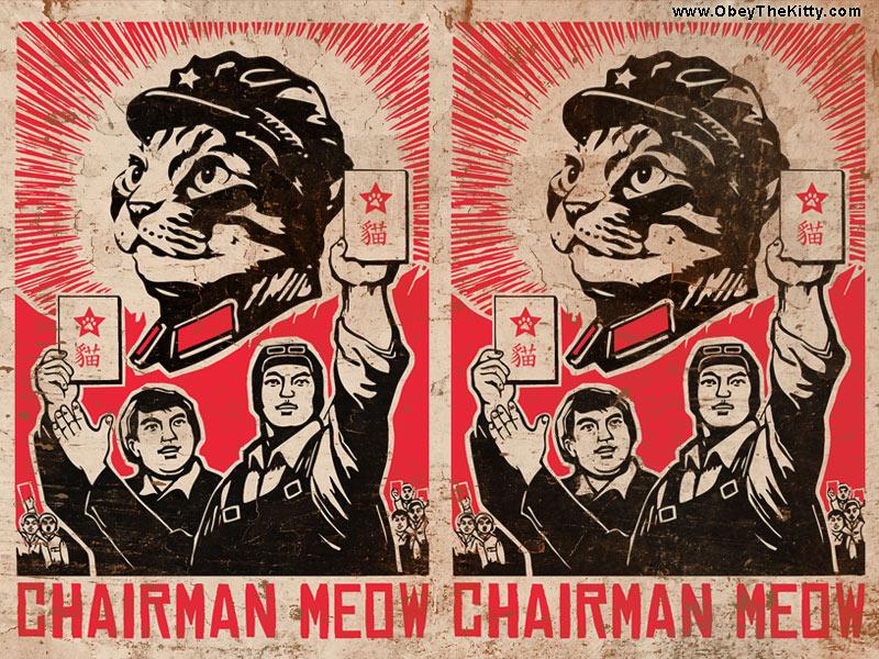 [Image: wallpaper_cat_meow.jpg]