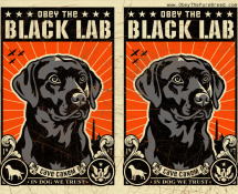 black lab wallpaper