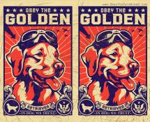 obey the golden retriever wallpaper