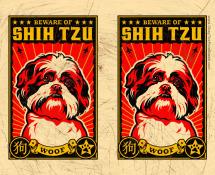 obey the shih tzu wallpaper
